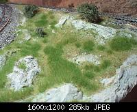 Нажмите на изображение для увеличения Название: P5200196.jpg Просмотров: 804 Размер:284.9 Кб ID:105265