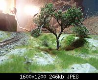 Нажмите на изображение для увеличения Название: P5290242.jpg Просмотров: 840 Размер:246.3 Кб ID:105269