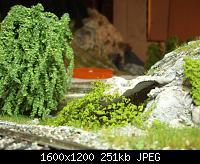 Нажмите на изображение для увеличения Название: P9230015.jpg Просмотров: 779 Размер:251.3 Кб ID:105273