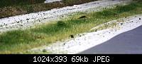 Нажмите на изображение для увеличения Название: трава высокая.jpg Просмотров: 602 Размер:68.6 Кб ID:41098