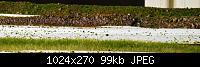 Нажмите на изображение для увеличения Название: трава высокая5.jpg Просмотров: 545 Размер:99.2 Кб ID:41125