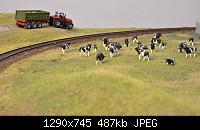 Нажмите на изображение для увеличения Название: коровы 2.jpg Просмотров: 576 Размер:487.0 Кб ID:41814