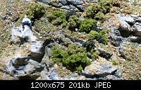 Нажмите на изображение для увеличения Название: image004.jpg Просмотров: 846 Размер:201.2 Кб ID:150958